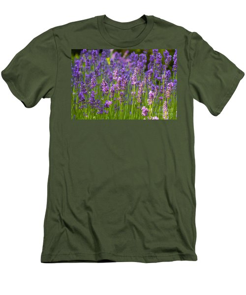 A Friendly Summer Day Men's T-Shirt (Athletic Fit)