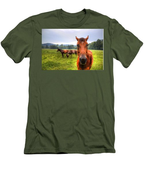 A Starring Horse 2 Men's T-Shirt (Athletic Fit)