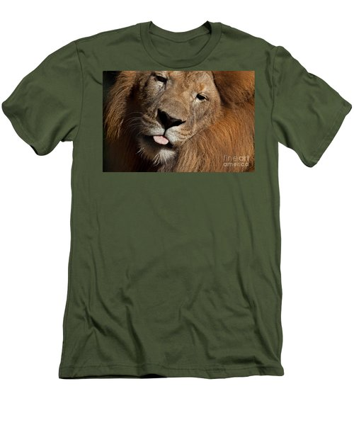Men's T-Shirt (Slim Fit) featuring the photograph African Lion by Meg Rousher