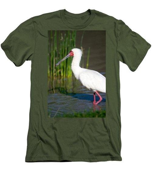 African Spoonbill Platalea Alba Men's T-Shirt (Athletic Fit)
