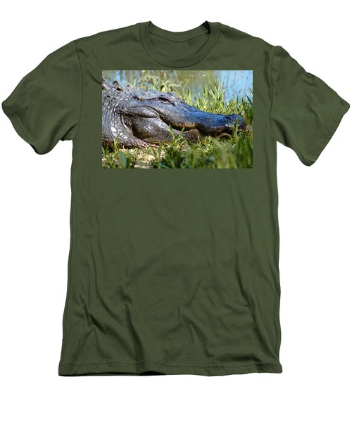 Alligator Smiling Men's T-Shirt (Athletic Fit)