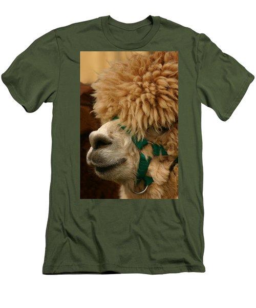 Alpaca Men's T-Shirt (Athletic Fit)