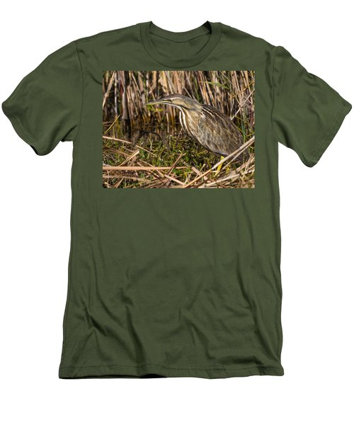 American Bittern Men's T-Shirt (Athletic Fit)