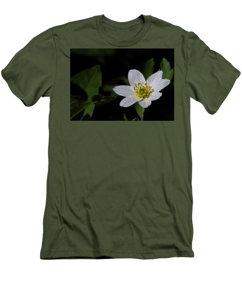 Anemone Nemorosa  By Leif Sohlman Men's T-Shirt (Slim Fit) by Leif Sohlman