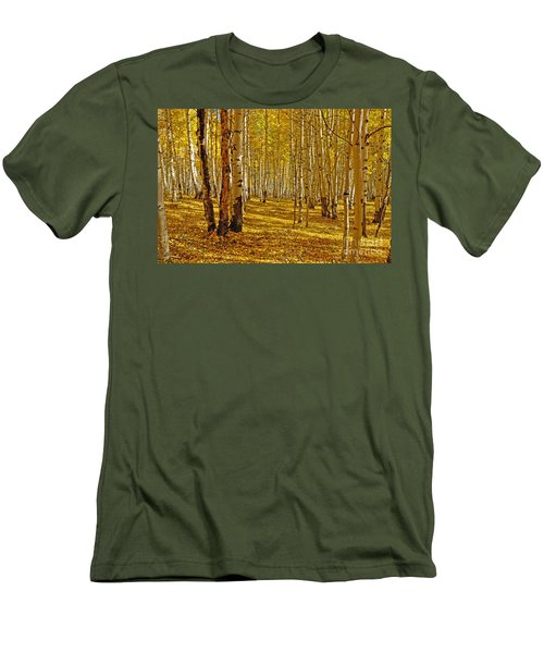Aspen Sanctuary Men's T-Shirt (Athletic Fit)