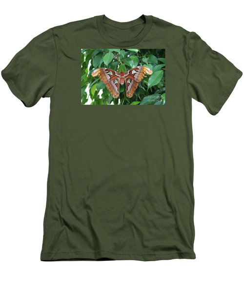 Men's T-Shirt (Slim Fit) featuring the photograph Atlas Moth #2 by Judy Whitton