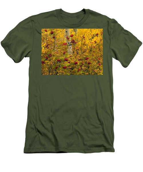 Autumn Forest Colors Men's T-Shirt (Athletic Fit)