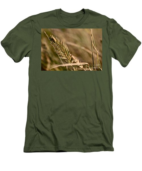 Autumn Grasses Men's T-Shirt (Athletic Fit)