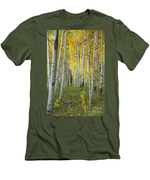 Autumn In The Aspen Grove Men's T-Shirt (Slim Fit) by Juli Scalzi