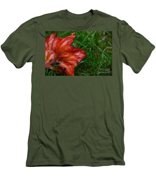 Autumn Leaf Men's T-Shirt (Slim Fit) by Melissa Petrey