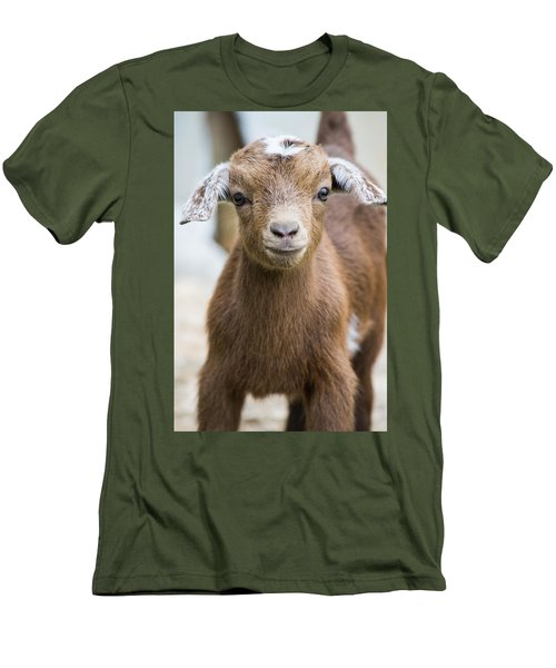 Baby Goat Men's T-Shirt (Slim Fit) by Shelby  Young