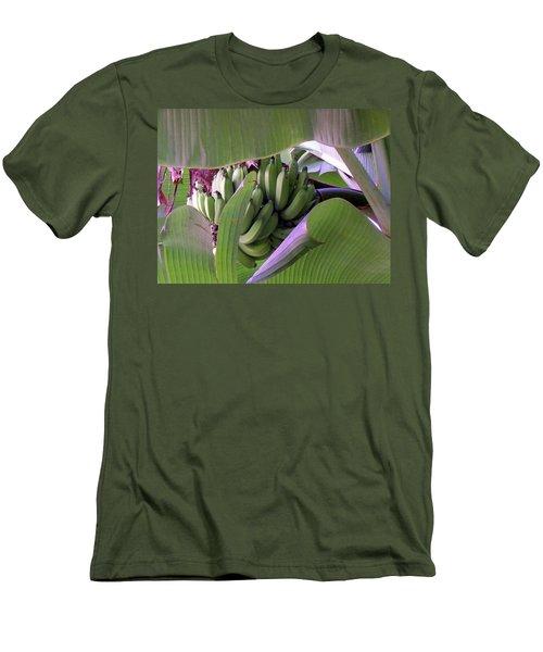 Banana Leaf Curtain Men's T-Shirt (Athletic Fit)