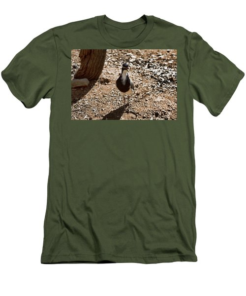 Banded Lapwing Men's T-Shirt (Slim Fit) by Douglas Barnard