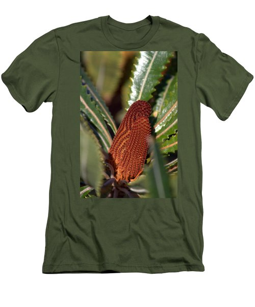 Banksia Men's T-Shirt (Slim Fit) by Miroslava Jurcik