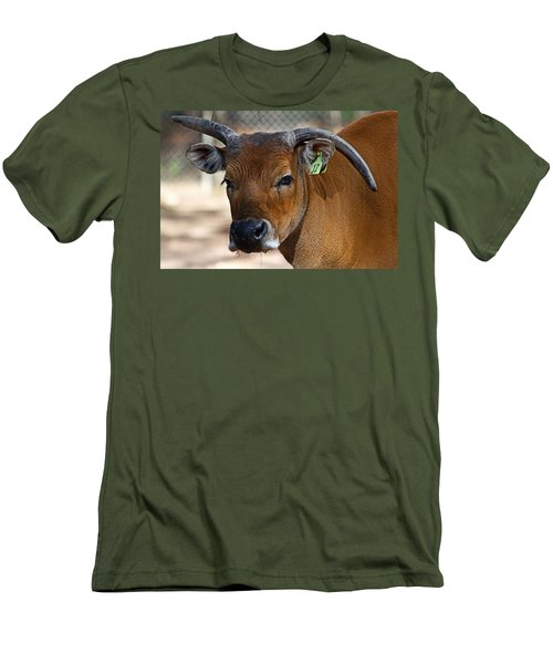 Banteng Girl Men's T-Shirt (Athletic Fit)