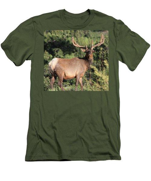 Battle Scars Men's T-Shirt (Athletic Fit)