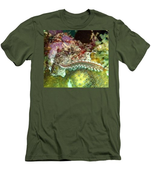Bearded Fireworm On Rainbow Coral Men's T-Shirt (Slim Fit) by Amy McDaniel