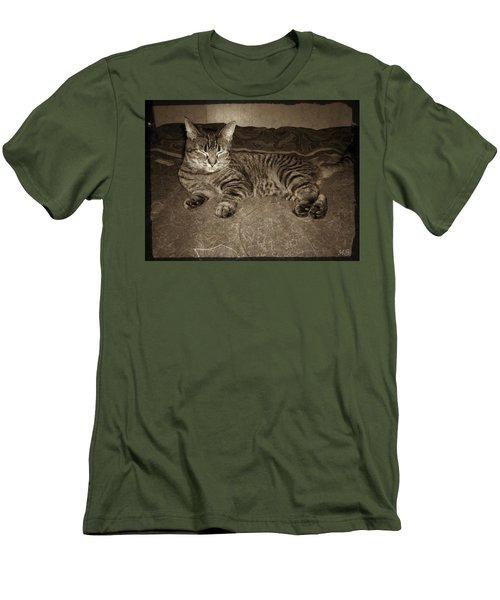Beautiful Tabby Cat Men's T-Shirt (Slim Fit) by Absinthe Art By Michelle LeAnn Scott