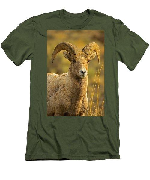 Biggie Men's T-Shirt (Athletic Fit)