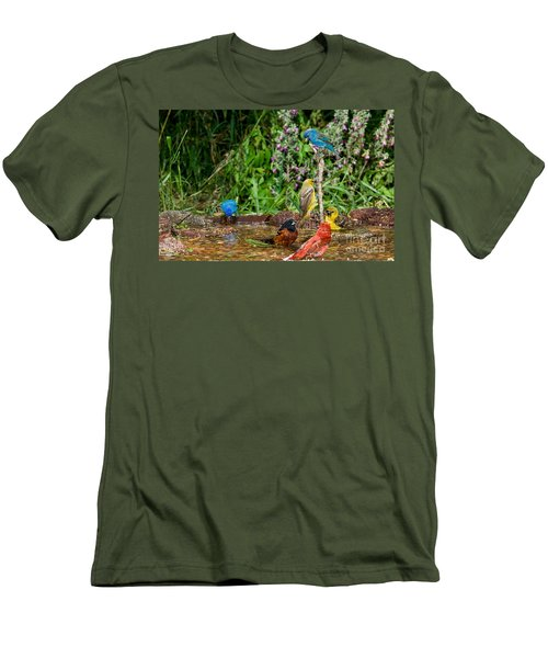 Birds Bathing Men's T-Shirt (Slim Fit) by Anthony Mercieca