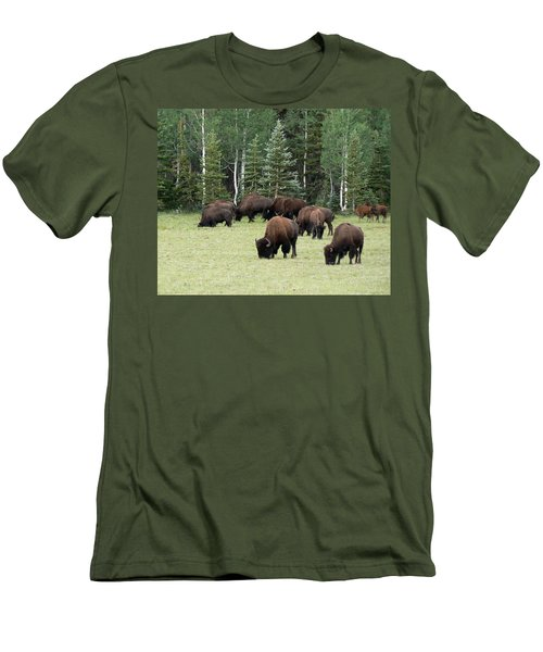 Bison At North Rim Men's T-Shirt (Slim Fit) by Laurel Powell