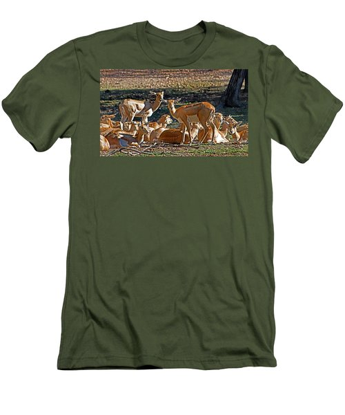 Blackbuck Female And Fawns Men's T-Shirt (Athletic Fit)