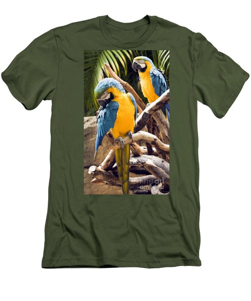 Blue And Yellow Macaw Pair Men's T-Shirt (Athletic Fit)