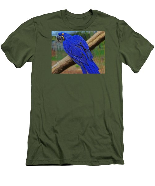 Men's T-Shirt (Slim Fit) featuring the photograph Blue Parrot by Jack Moskovita