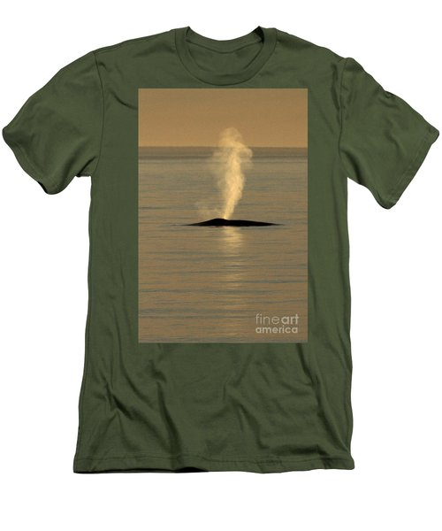 Men's T-Shirt (Slim Fit) featuring the photograph Blue Whale At Sunset In Monterey Bay California  2013 by California Views Mr Pat Hathaway Archives