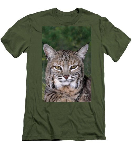 Bobcat Portrait Wildlife Rescue Men's T-Shirt (Athletic Fit)