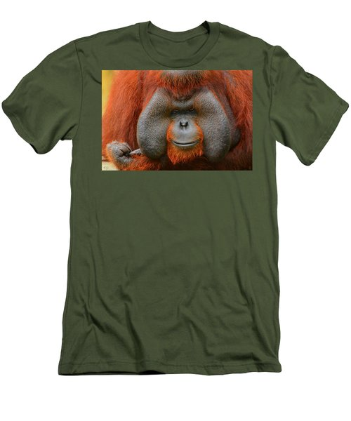Bornean Orangutan Men's T-Shirt (Athletic Fit)