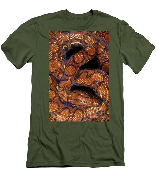 Brazilian Rainbow Boa Men's T-Shirt (Athletic Fit)