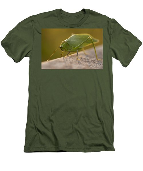 Broad-winged Katydid Men's T-Shirt (Athletic Fit)