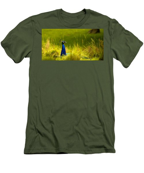 Bronx Zoo Peacock Men's T-Shirt (Athletic Fit)