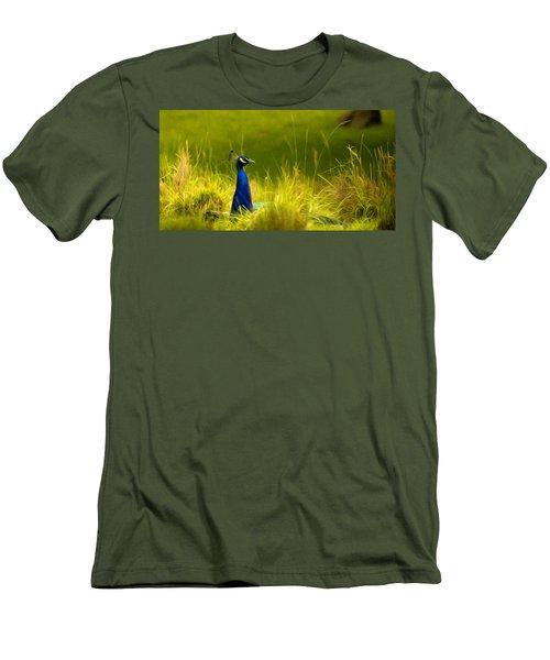 Bronx Zoo Peacock Men's T-Shirt (Slim Fit)