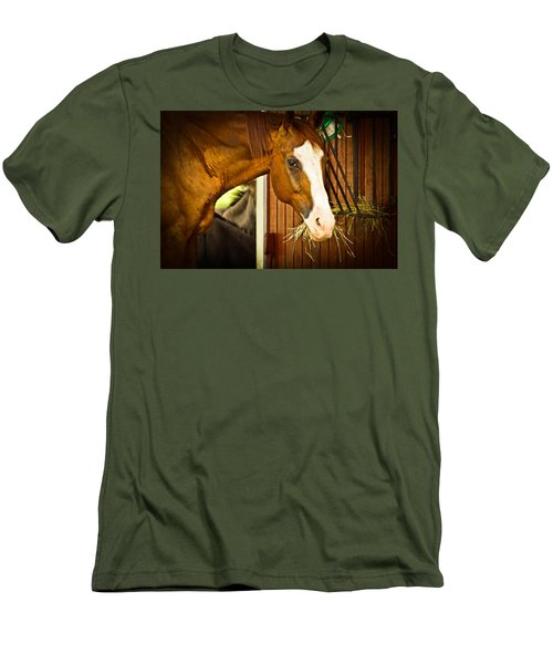 Brown Horse Men's T-Shirt (Athletic Fit)