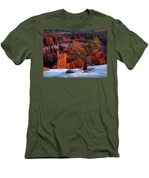 Bryce Canyon Winter Light Men's T-Shirt (Athletic Fit)