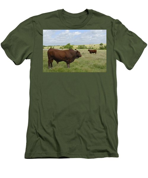 Men's T-Shirt (Slim Fit) featuring the photograph Bull And Cattle by Charles Beeler