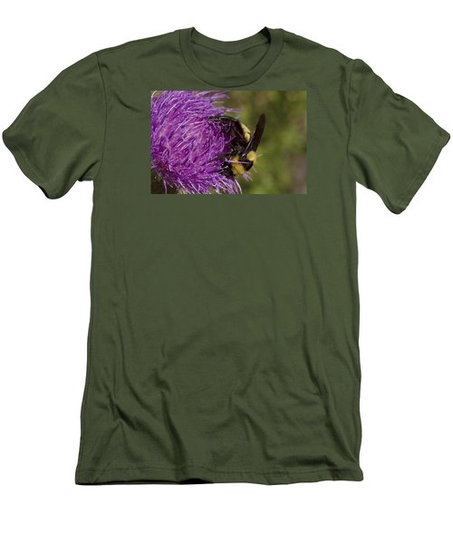 Bumble Bee On Thistle Men's T-Shirt (Slim Fit) by Shelly Gunderson