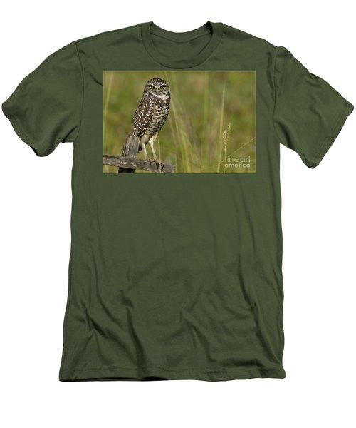 Burrowing Owl Stare Men's T-Shirt (Slim Fit) by Meg Rousher