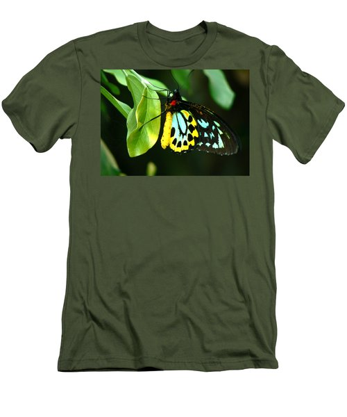 Butterfly On Leaf Men's T-Shirt (Athletic Fit)