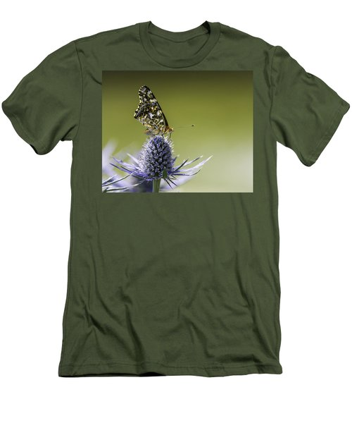 Butterfly On Thistle Men's T-Shirt (Slim Fit) by Peter v Quenter