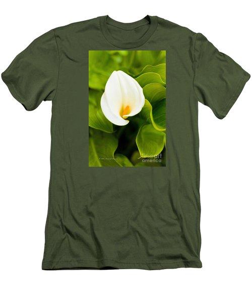 Calla Lily Plant Men's T-Shirt (Athletic Fit)