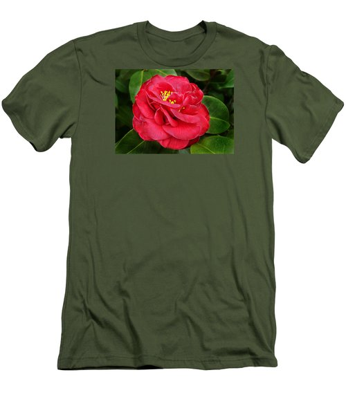 Camellia Japonica ' Dixie Knight ' Men's T-Shirt (Slim Fit) by William Tanneberger