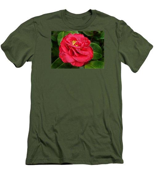 Camellia Japonica ' Dixie Knight ' Men's T-Shirt (Slim Fit)