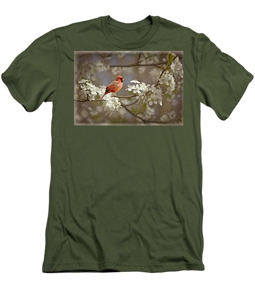Cardinal And Blossoms Men's T-Shirt (Athletic Fit)