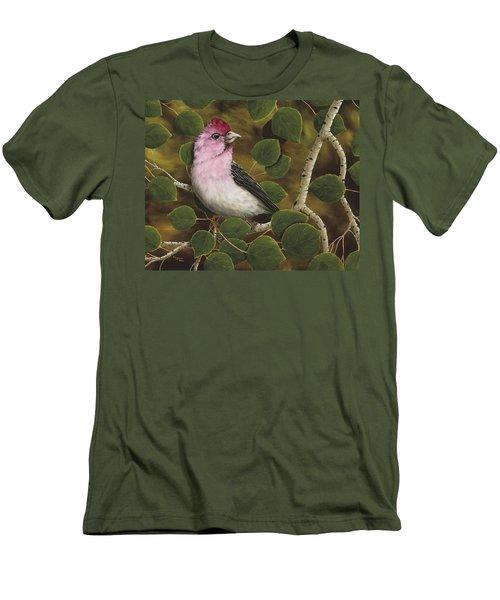 Cassins Finch Men's T-Shirt (Athletic Fit)