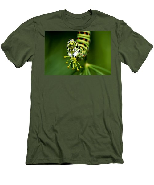 Caterpillar Of The Old World Swallowtail Men's T-Shirt (Slim Fit) by Torbjorn Swenelius