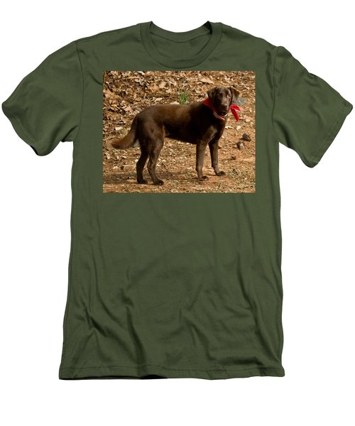 Men's T-Shirt (Slim Fit) featuring the photograph Chocolate Lab by Robert L Jackson