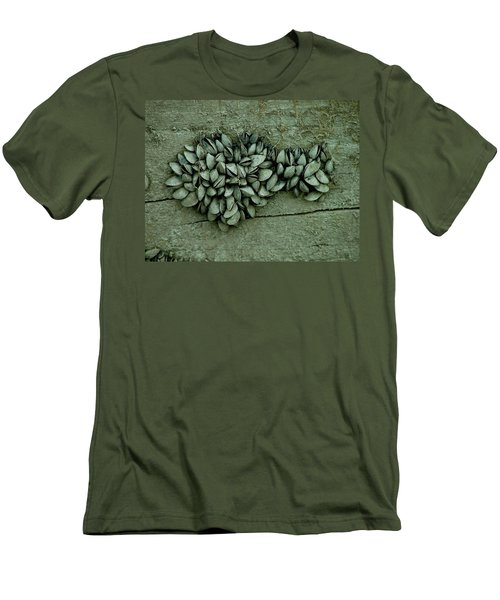 Clam Shells Men's T-Shirt (Athletic Fit)
